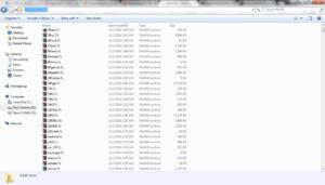 MAME Roms Folder